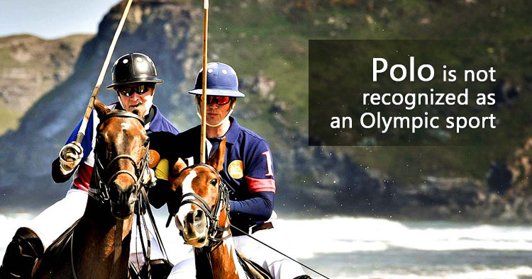 Polo Olympic fact