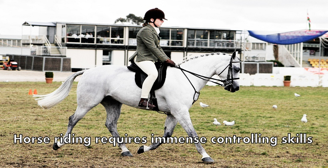 horse riding 4