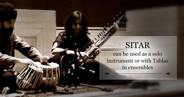 sitar features