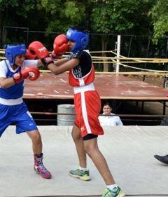 Junior Boxing Championship