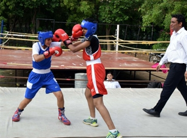 Junior Boxing Championship