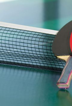 LIC-South Zone National-ranking table tennis tournamen