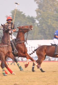 Hold your horses! Delhi pollution has not spared Army ponies too