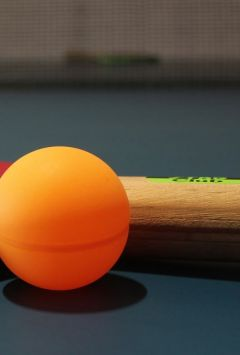 Czech Open junior and cadet table tennis tournament