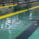 Haryana Swimming Trials in Faridabad on 15 th March