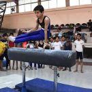 State Sub-juniors Artistic and Rhythmic Gymnastics Championship
