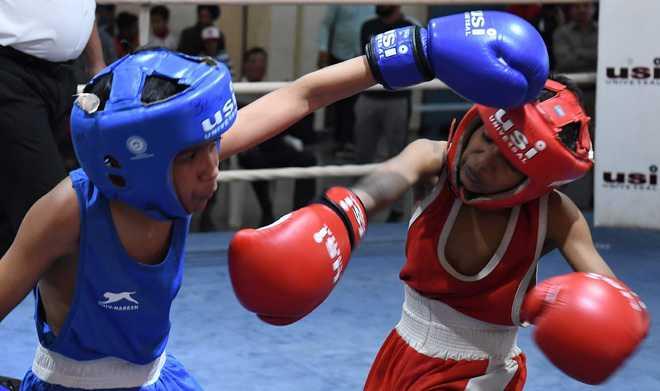 UT Open Boxing Championship