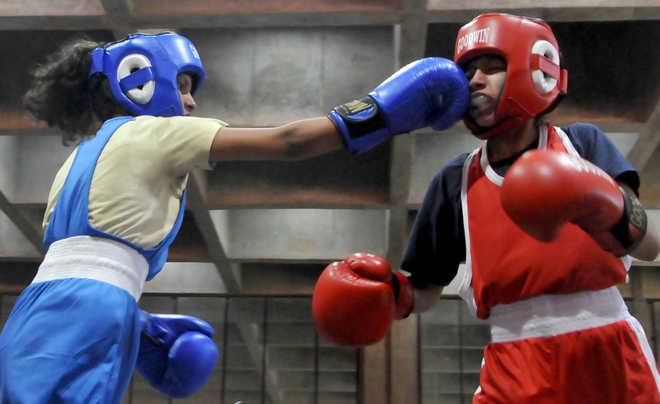 34th Sub-Junior Chandigarh Amateur Boxing Championship